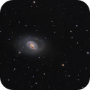 M96 - An Asymmetric Spiral,                                Jason Guenzel