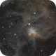 IC 417 - the Spider Nebula,                                Michael Kolstad
