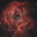 NGC2244 Nébuleuse de la Rosette,                                Stephane Jung