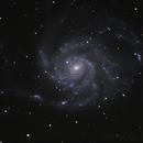 M101 - Pinwheel Galaxy,                                Ray Ellersick