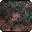 IC 1396 wide field,                                floreone