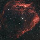 Sh2-129 - The Flying Bat Nebula,                                Maximilian