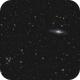 Deer Lick Group and Stephan's Quintet,                                Emil Andronic