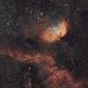 sh2-101 the Tulip Nebula,                                Jeremy Jonkman