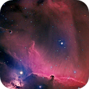 Horsehead and Flame nebulae - HaRGB,                                David Lindemann