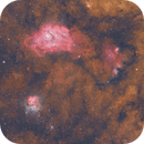Lagoon and Trifid,                                Dennis Sprinkle