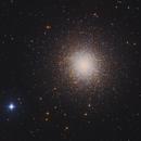 M13, Great Globular Cluster in Hercules,                                Firas Haki