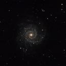 Messier 74,                                WJM Observatory