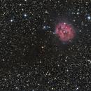 Cocoon Nebula (IC 5146),                                Kevin Whiteside