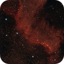 NGC7000 North American Nebula Wall,                                Richard Cardoe
