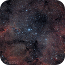 IC1396 and the Elephant Trunk,                                Roberto Frassi
