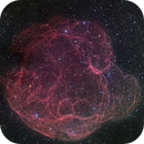 Spaghetti Nebula - Simeis 147 - Hybrid palette - Ha, OIII, Red, Green, and Blue - LRGB composition,                                David Lindemann