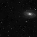 Bode's Galaxy and Cigar Galaxy,                                Ryan Caputo