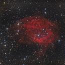 Sh2-261, Lower's Nebula,                                Michael S.