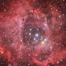 Rosette Nebula,                                Shun-Chia yang