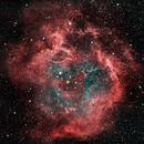 Rosette Nebula,                                Dave Brewster