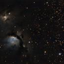 Nebulosa M78,                                Ernesto Arredondo