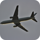 Searching plane plate numbers - Boeing 767-375-Air Canada, 1989-Canon 250 mm-no crop,                                Adel Kildeev