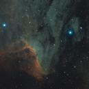 IC 5070 - Pelican Nebula - SHO,                                Andreas Glassér