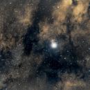IC1318  Y Cyg Nebula,                                Albert  Christensen