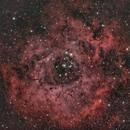 Rosette Nebula,                                tdsdmd
