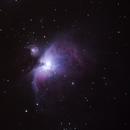 Orion nebula,                                amell
