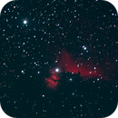 HorseHead Nebula,                                griz11