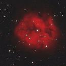 IC5146 - Cocoon Nebula,                                Matt Lochansky