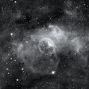 The Bubble Nebula,                                Wes Higgins