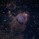 Fish head nebula,                                Brian Ritchie