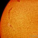 Sun in H-alpha (31 aug 2015, 14:55),                                Star Hunter