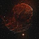 Jellyfish Nebula (IC 443),                                Christian Vial Arce