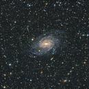 NGC6744 - Playing with short subs (20s),                                Matt Balkham