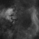 NGC 7822,                                Patryk