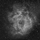 NGC2244  H-alfa,                                Álmos Balási