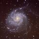 M 101, Pinwheel Galaxy,                                w4sm