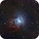 NGC7023 - Iris Nebula,                                Mario Edelbauer