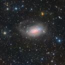 M63 - The Sunflower Galaxy,                                Insight Observatory