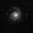 M74 Monochrome,                                Peppe.ct