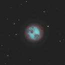 M97 - Owl Nebula / 2020,                                Mikko Viljamaa