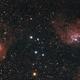 IC 410 and IC 405.,                                Scotty Bishop
