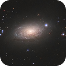 M63 with my little 100mm APO,                                Sven Hoffmann