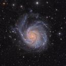 M101 pinwheel  - version 2019 /2020,                                Arnaud Peel