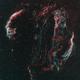 Veil Nebula (Cygnus Loop),                                Michael Bushell