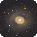 Messier 94 (M94), also known as Cat's Eye Galaxy,                                Andre van Zegveld
