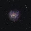 Messier 83 - Southern Pinwheel Galaxy,                                Daniel and Iana Egan