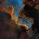 NGC7000 (The Wall) SHO,                                Randal Healey