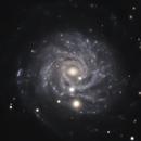 NGC 3344,                                Gary Imm