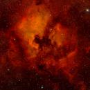 Northern Cygnus On Fire,                                Jay McNeil