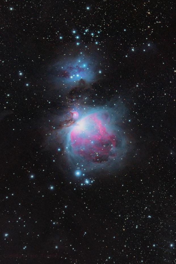 M42,                                Lorenz De Broe
